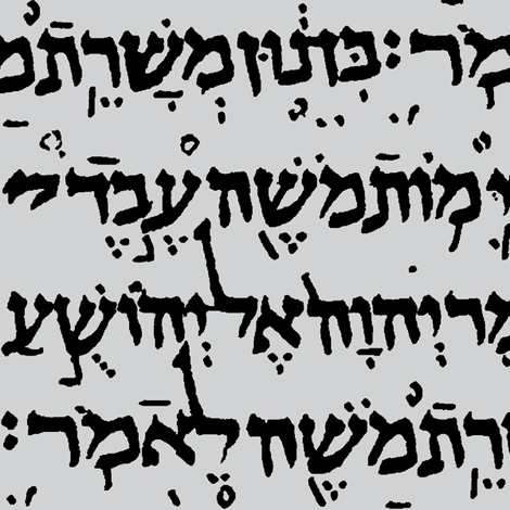 Hebrew on Light Grey // Large fabric by thinlinetextiles on Spoonflower - custom fabric
