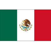 Mexican Flag // Large
