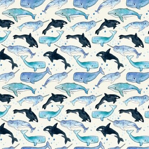 Whales, Orcas & Narwhals - Small Scale