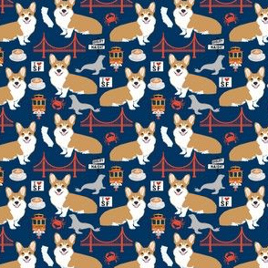 corgi san francisco (small scale) vacation travel city navy