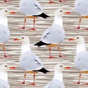Watercolor Seagulls