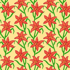 Orange Daylily on Yellow