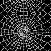 Rrrspider_web_on-black_shop_thumb