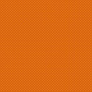 Campion-orange