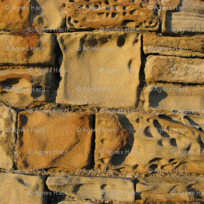 Eroded sandstone wall