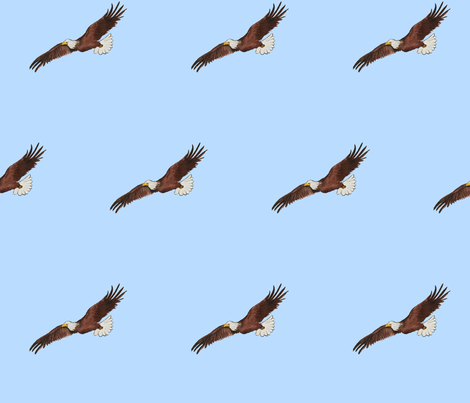 Soaring Eagle fabric by lgsmith on Spoonflower - custom fabric