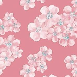 pale garden // pink