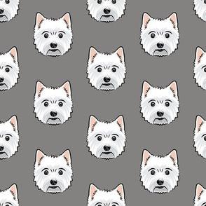 Westie - West Highland White Terrier - dogs on grey