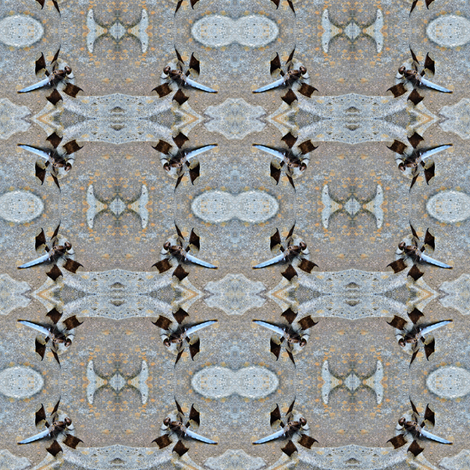 Whitetail Dragonfly fabric by joajem on Spoonflower - custom fabric