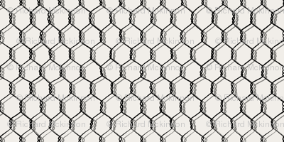 Chicken Wire Pale Horizon