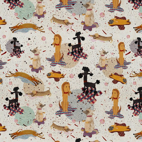 Dogs on rugs