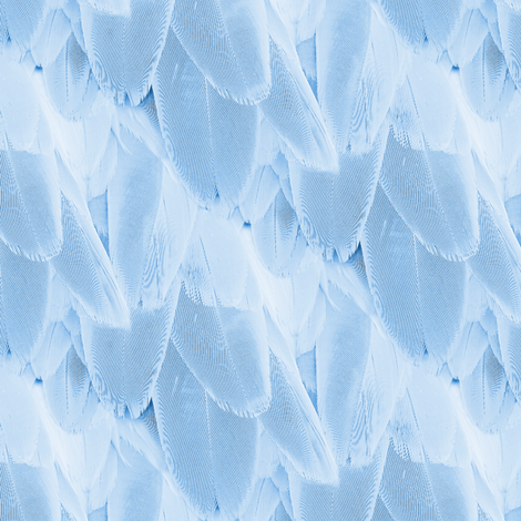 bird feather - blue fabric by stofftoy on Spoonflower - custom fabric