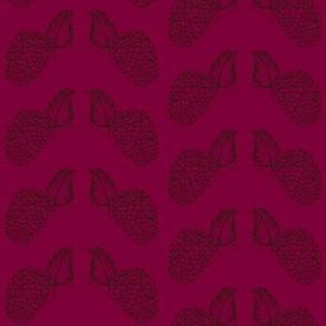 Rasspberry ripe-