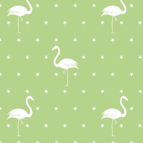 flamingos and stars on light green - small
