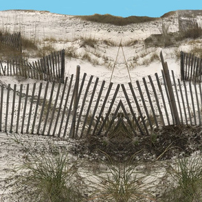 Sand Dunes Alabama