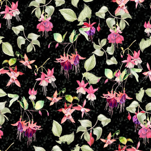 FUCHSIA FLOWERS WATERCOLOR GARDEN FLORAL ON BLACK