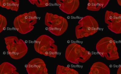 red skull - xray