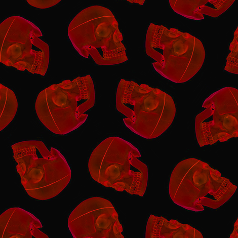 red skull - xray fabric by stofftoy on Spoonflower - custom fabric