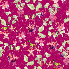 FUCHSIA FLOWERS WATERCOLOR GARDEN ON RASPBERRY PINK BURGUNDY
