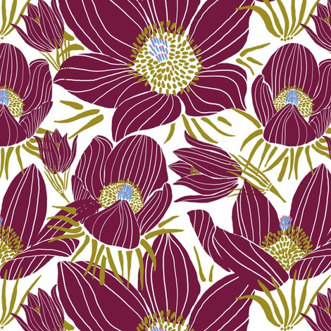 Rr_arctic-beet-red-pasque-flowers-white_shop_preview