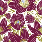Rr_arctic-beet-red-pasque-flowers-white_shop_thumb