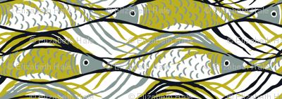 OneFish2Fish-olive