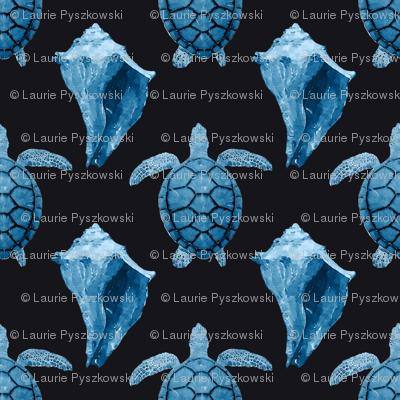 Blue Sea Turtles & Conch Shell on Black