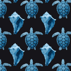 Blue Sea Turtles & Conch Shell on Black