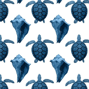 Blue Sea Turtles & Conch Shells on White