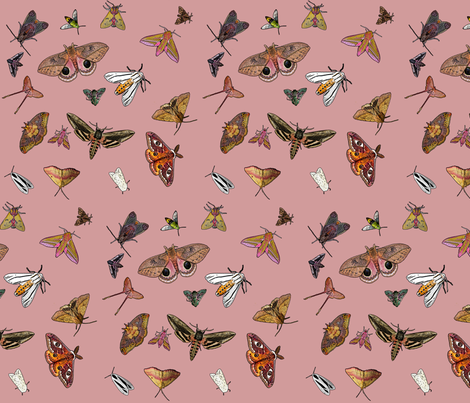 Many Moths 9 fabric by mimsy_whipstitch on Spoonflower - custom fabric
