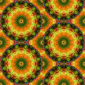 Amazon Mandala02
