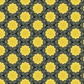 Daffodil Kaliedoscope