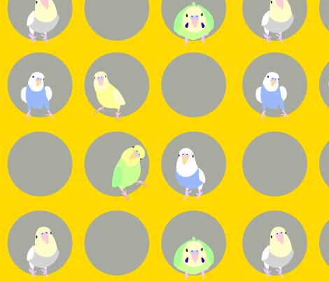 parakeets on fleek fabric by gitano on Spoonflower - custom fabric