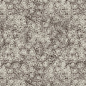 Cup Lichen Texture -  Cream and Brown
