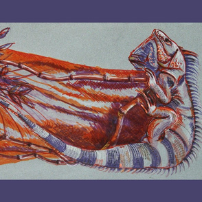 Iguana Tea Towel