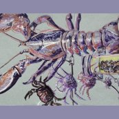 Lobsters_border_shop_thumb