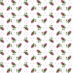 Tiny Rosebuds on White