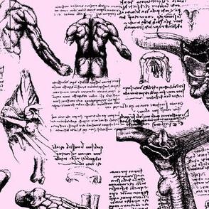 Da Vinci's Anatomy Sketchbook // Light Pink // Large