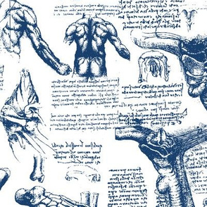 Da Vinci's Anatomy Sketchbook // Dark Blue // Large