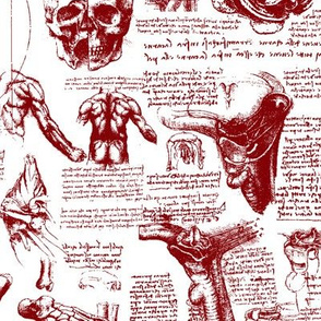 Da Vinci's Anatomy Sketchbook // Burgundy // Small