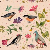 Rrrbirds-and-wildflowers_shop_thumb