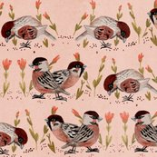 Rrrrrrrsparrow-fabric_shop_thumb