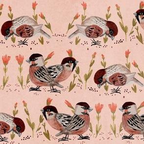 sparrow fabric