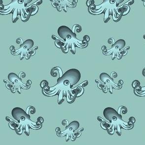 Squids, Blue/turquoise