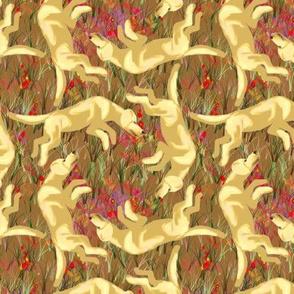 Square Dancing Yellow Labrador Retrievers