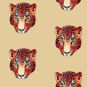 Wild leopard, Red
