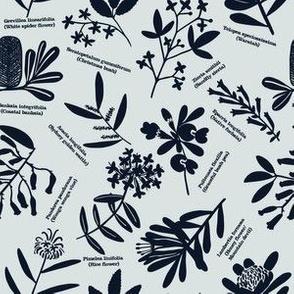 Australian wildflowers: green
