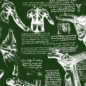 Da Vinci's Anatomy Sketchbook // Myrtle Green // Large