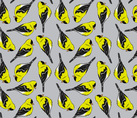 Goldfinch  fabric by courtney_kmann on Spoonflower - custom fabric