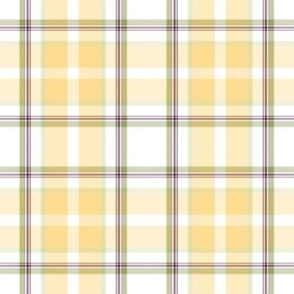 f-Gold plaid